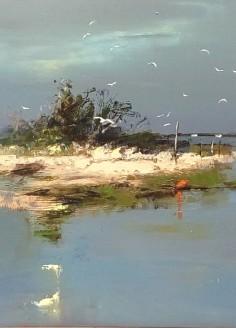 L'Île aux Oiseaux 40-40